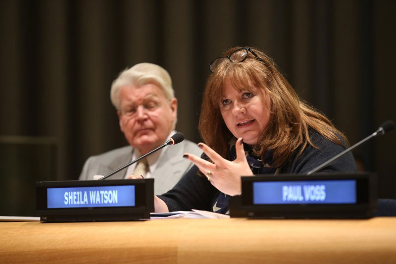 Sheila Watson appointed to Advisory Expert Group on SDG7 energy goal