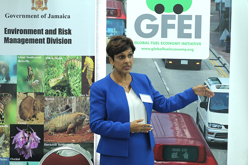 GFEI project manager for Jamaica Dr Ruth Potopsingh spoke at the event.