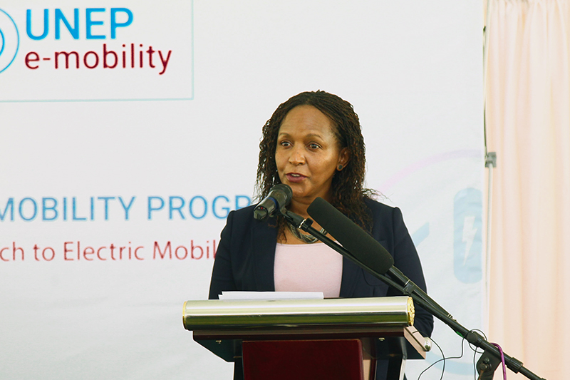 Ms. Joyce Msuya - Deputy Executive Director, UN Environment Programme (UNEP).